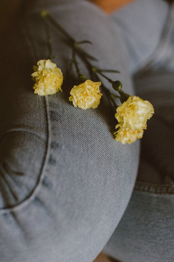 frank-flores-464933-unsplash